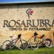 长途骑行后,在罗萨露拉庄园休憩和品味美酒